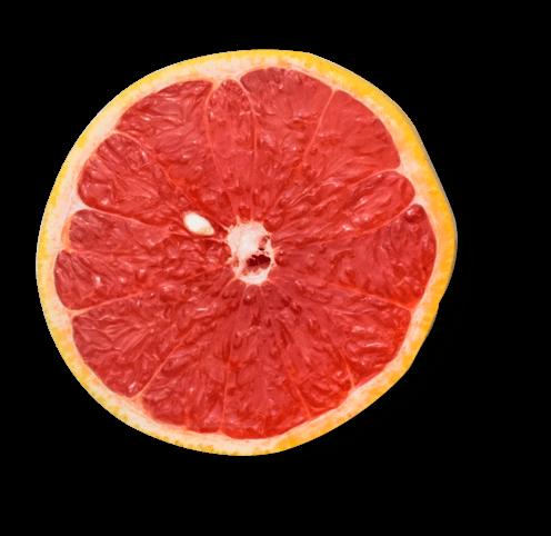 plato-chic-superfood-home-arancia