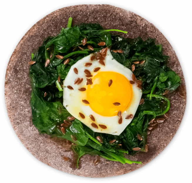 plato-chic-superfood-home-velo-egg